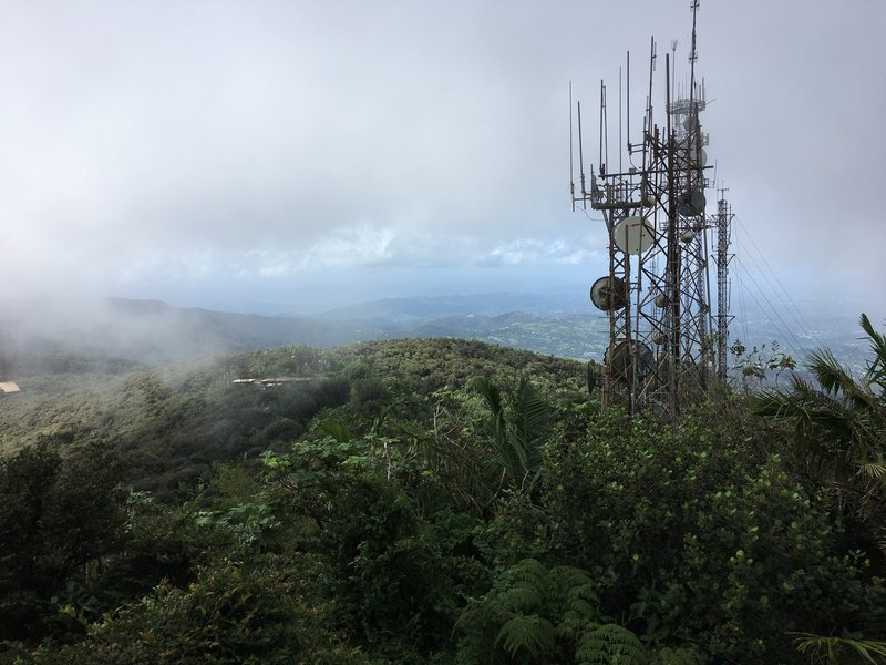 The view from atop El Yunque Peak can often be clouded. However, even in the clouds, the view is absolutely worth it.