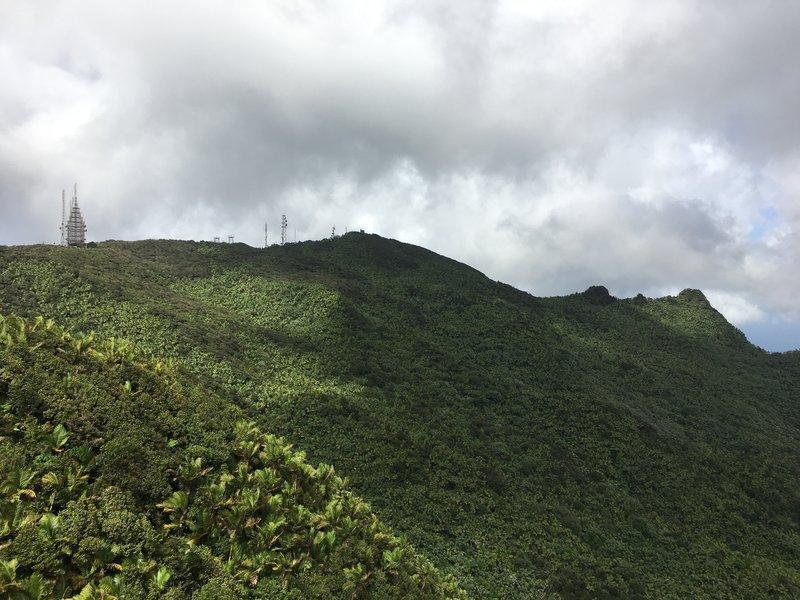 Great views of El Yunque Peak treat visitors at the end of Los Picachos Trail.