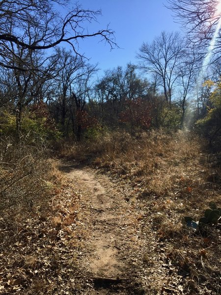 The Oak Motte Trail travels through peaceful forests and scenic meadows.