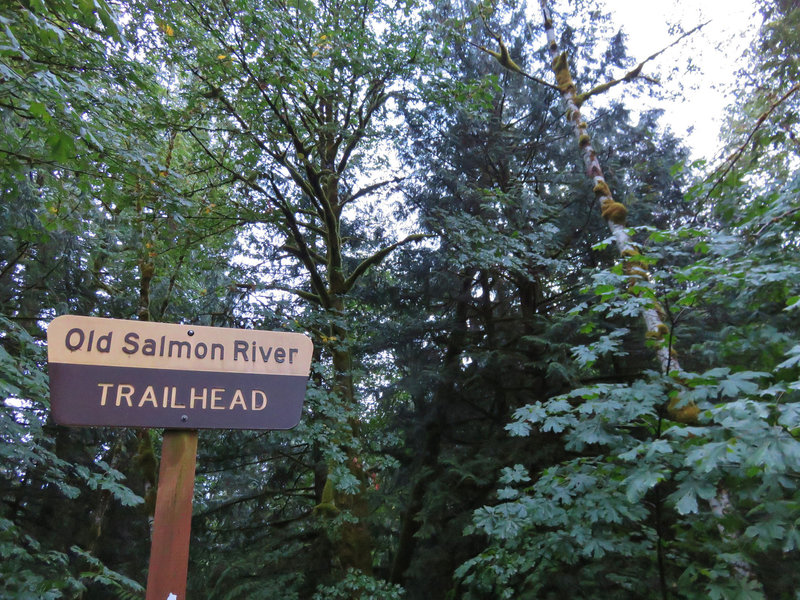 The Old Salmon River Trailhead is just past the forest boundary.  Photo by Yunkette.