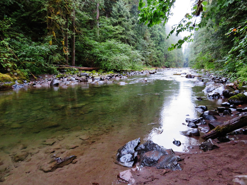 There are many user trails that lead down to the Salmon River's bank to cool off or enjoy a picnic. Photo by Yunkette.