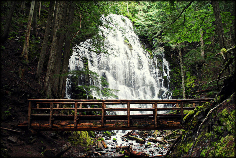 Ramona Falls Trail is one of the iconic destinations in Mt. Hood National Forest. Photo by Ethan Douglass.
