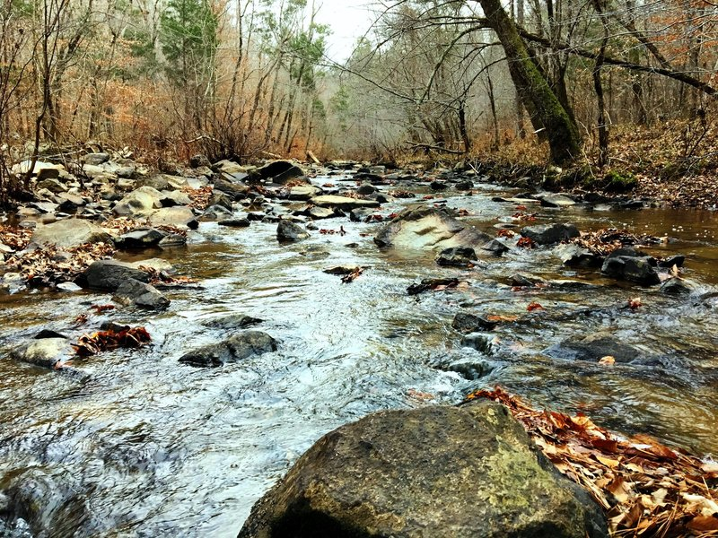 New Hope Creek gurgles with abundant flowing water during the wintertime.