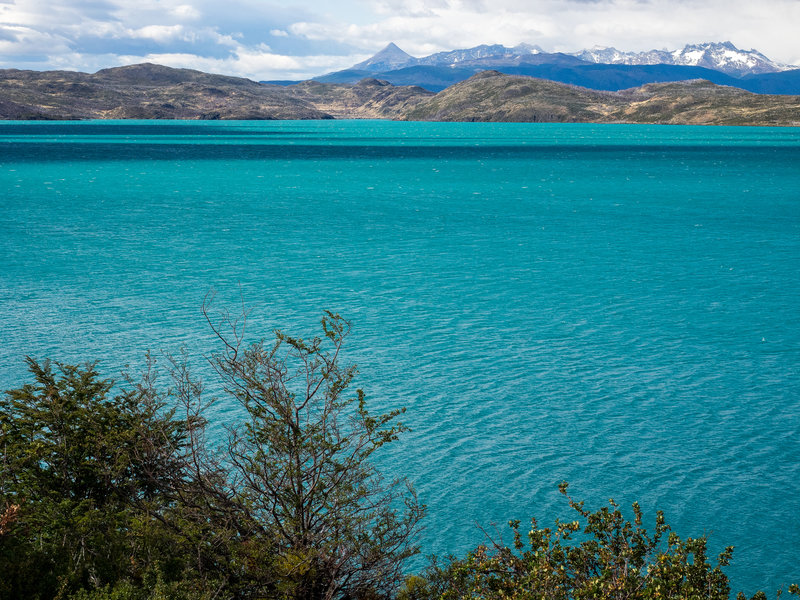 Heading along the shore of Lago Pehoé, expect to see the most beautifully colored, teal water of your entire life.
