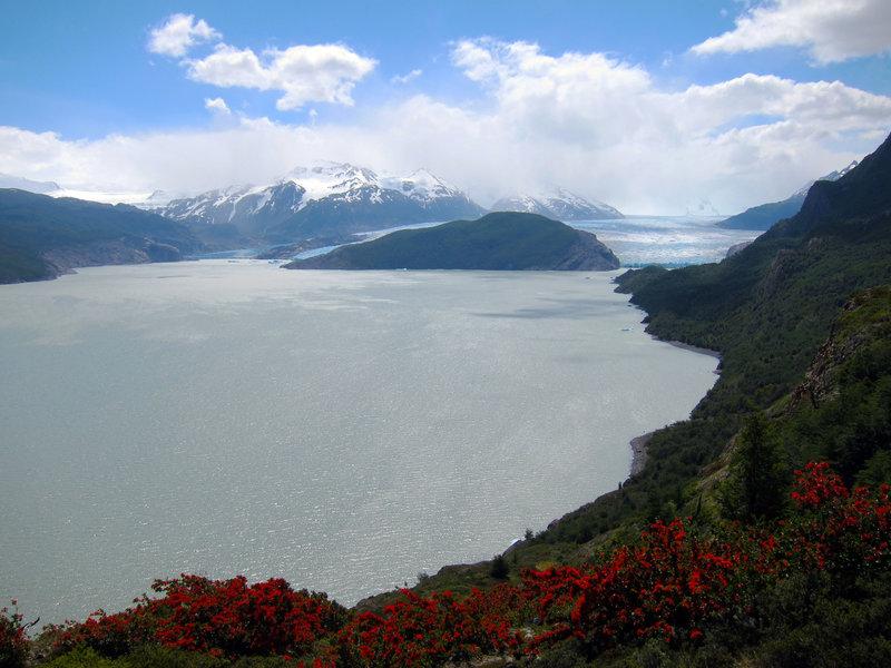 Glaciar Grey ends into Lago Grey in Parque Nacional Torres del Paine.