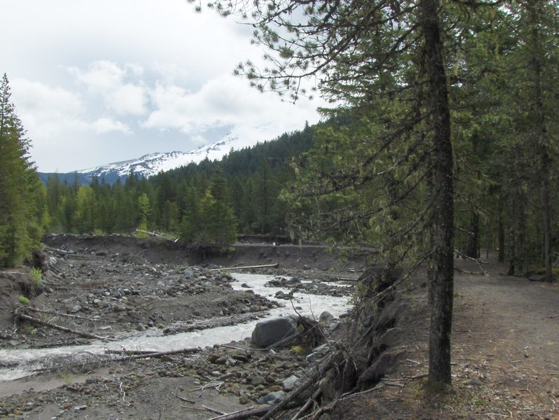 The notoriously unstable Sandy River flows through old mudflows from a Mt. Hood eruption in the late 1780s. The river can move a quarter mile in a large flood event, eating away parts of the Sandy River bank over time.