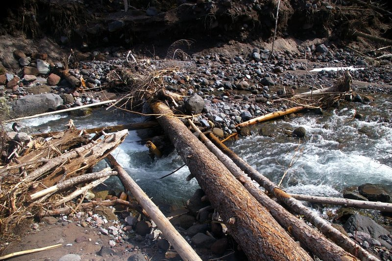 Visitors must use caution when crossing the Sandy River. If you choose to cross on down logs, ensure they are stable, and be careful of loose bark.