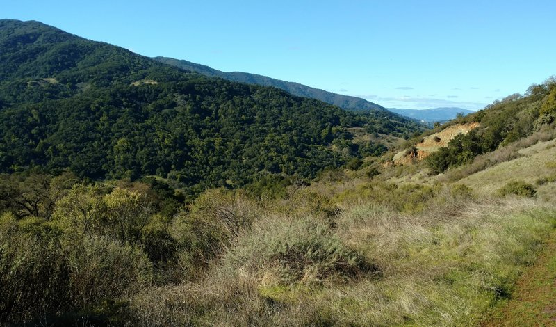 The Santa Cruz Mountains are on the right when looking northwest on the Providencia Trail.