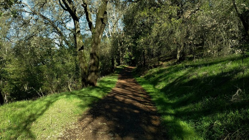The Randol Trail meanders through wooded and open grass areas.