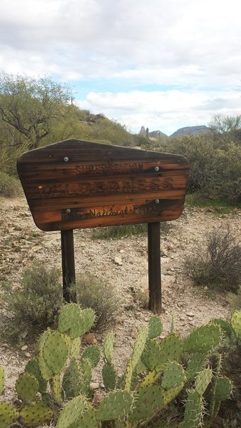 You enter the Superstition Wilderness immediately after starting the run.