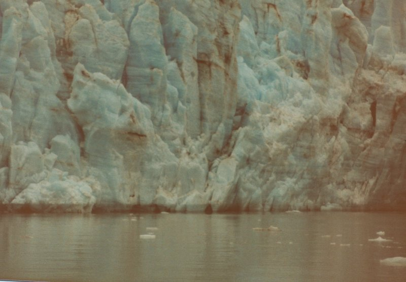 Ice floating in front of Marjerie Glacier offers evidence of recently calved icebergs.