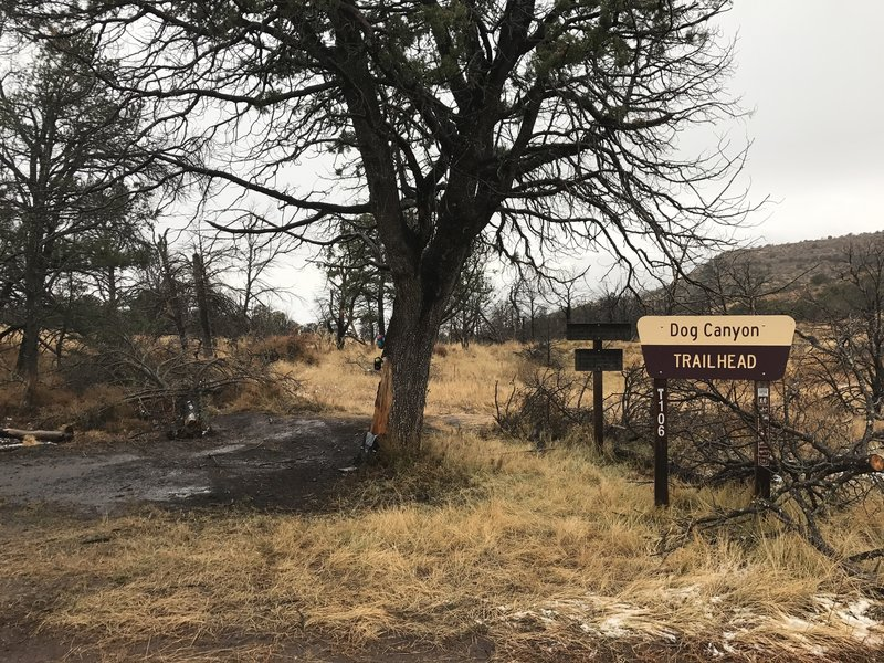The upper Dog Canyon Trailhead is located at a junction with Forest Road 90B.