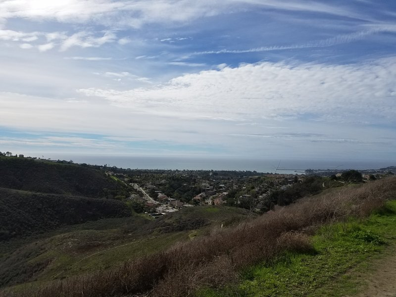 Expect ocean views looking out at Dana Point Harbor when walking on Patriot Hill.
