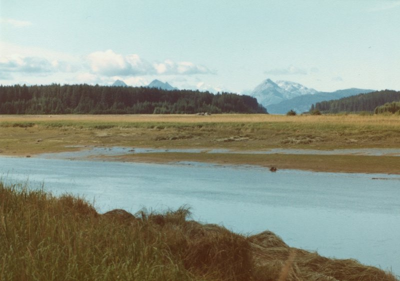 The tidal flats on the Bartlett River make a beautiful foreground to the Fairweather Range.