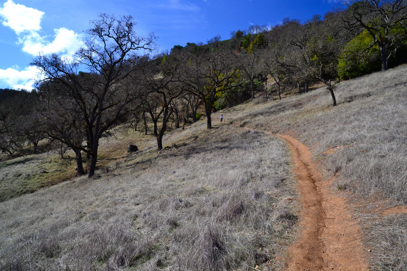China Hole Trail offers visitors a steady climb up a grassy slope.