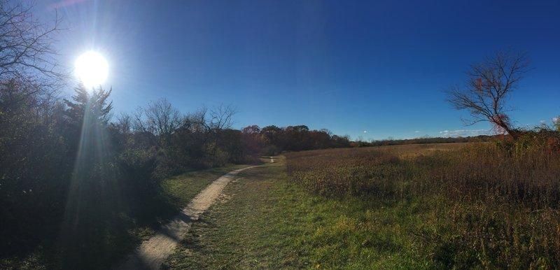 Stillwell Woods, Woodbury, Long Island, NY