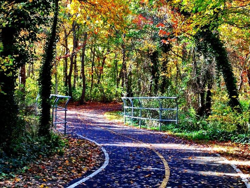 Bethpage Bikepath, Farmingdale, Long Island, NY