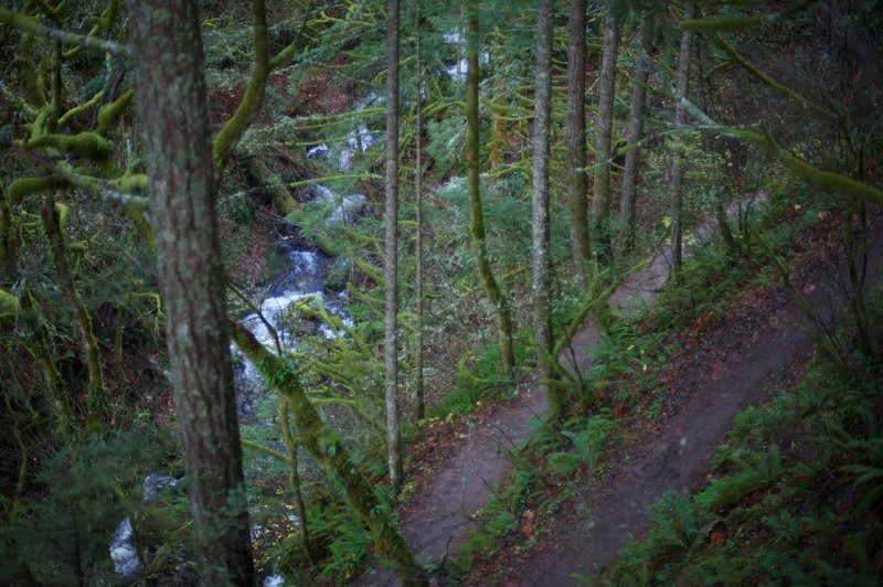 The trail switches back as it approaches the falls. The creek flows close to the trail.