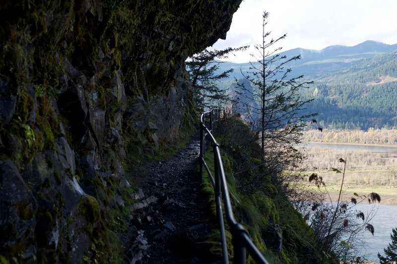 Looking back at the Columbia River and surrounding area, you truly get a sense of the grandeur of this area. The trail is hewn into the cliffside, so it's not ideal for those afraid of heights.