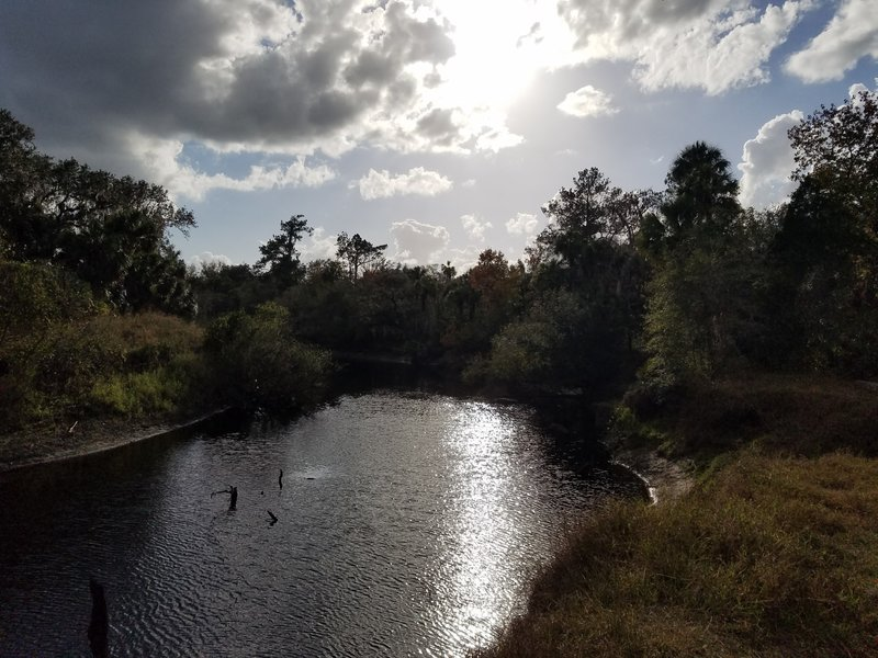 The Little Big Econlockhatchee River makes your journey on the Kokolee Loop nice and peaceful.