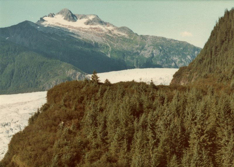 This is looking up Mendenhall Glacier from the East Glacier Trail in 1980. Mendenhall Glacier has receded about a mile since then.