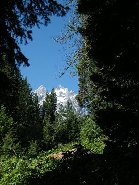 "Views of the Cathedral Group from the ""Horse Trail"" (Jenny Lake - Cascade Canyon Connector Trail)."