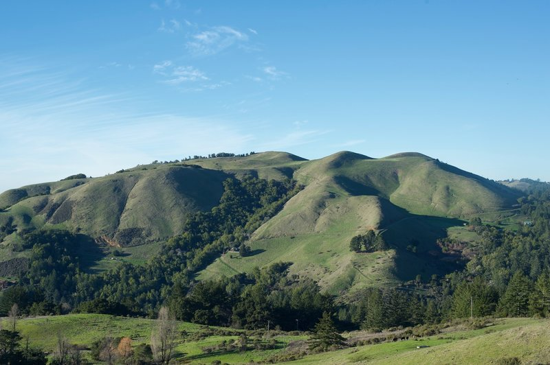 Numerous hills surround Mindego Hill. The hills are green in the winter, thanks to the rain storms that blow through.