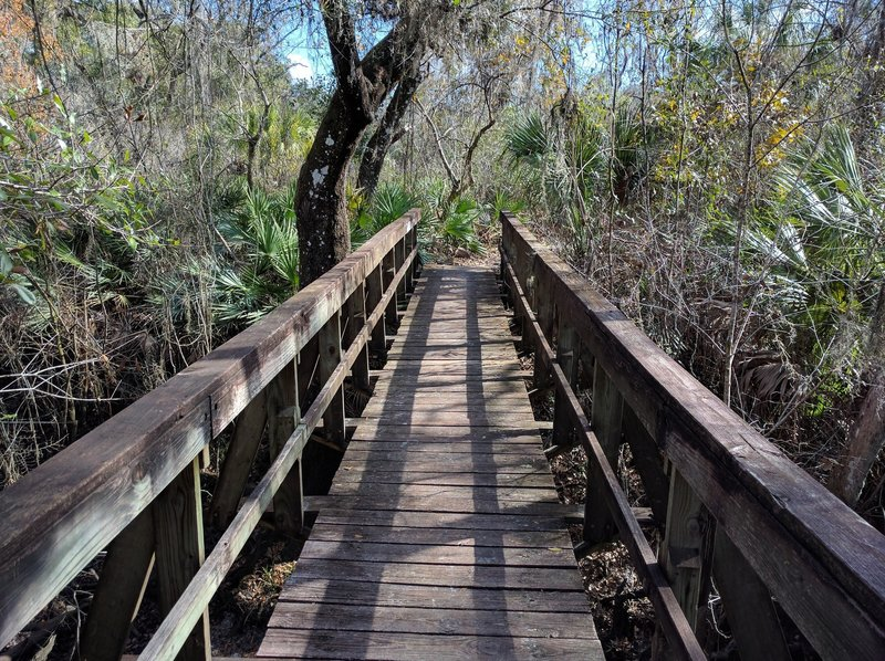 Multiple sturdy bridges help visitors travel over a tributary along the trail.