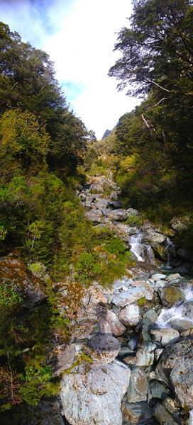 This is one of multiple gorgeous creek crossings you'll make on the way to Falls Hut.