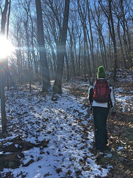 The winter sun begins to set by 3pm on our hike in West Rock Ridge State Park.