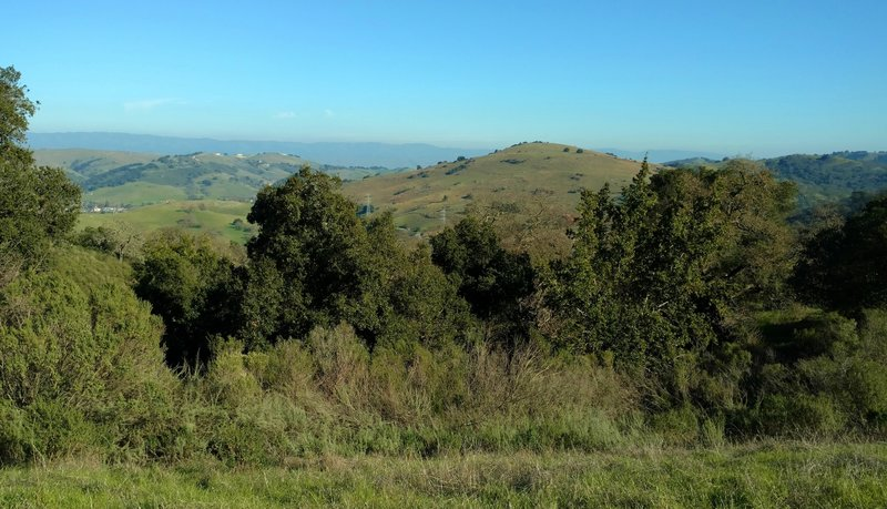 The countryside south of San Jose looks absolutely gorgeous from the Virl O. Norton Trail.