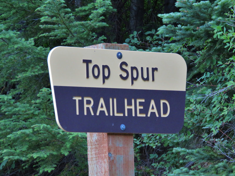 Top Spur Trailhead is located at a wide point in the road and gets very busy on summer afternoons and weekends. Photo by Yunkette.
