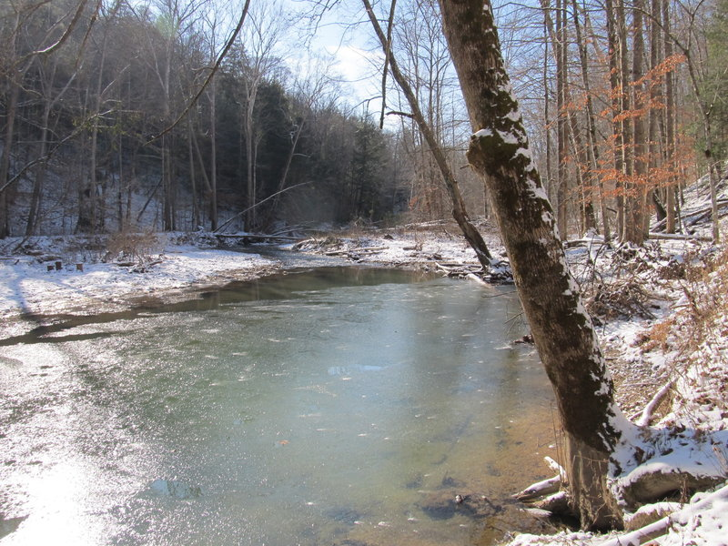 At this point during the winter, Gladie Creek was half frozen.