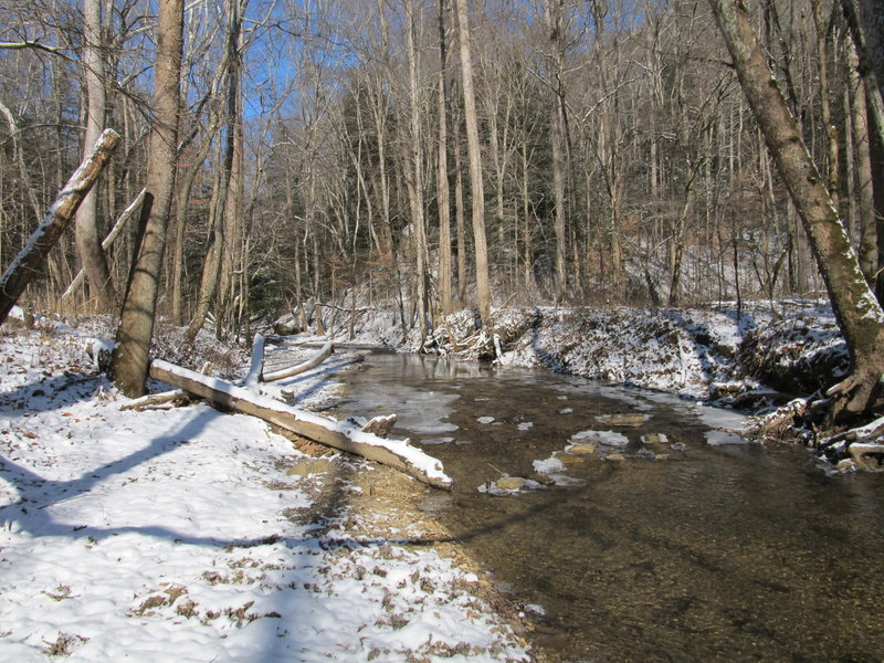 Sheltowee Trace crosses Salt Fork Creek. Watch your step.