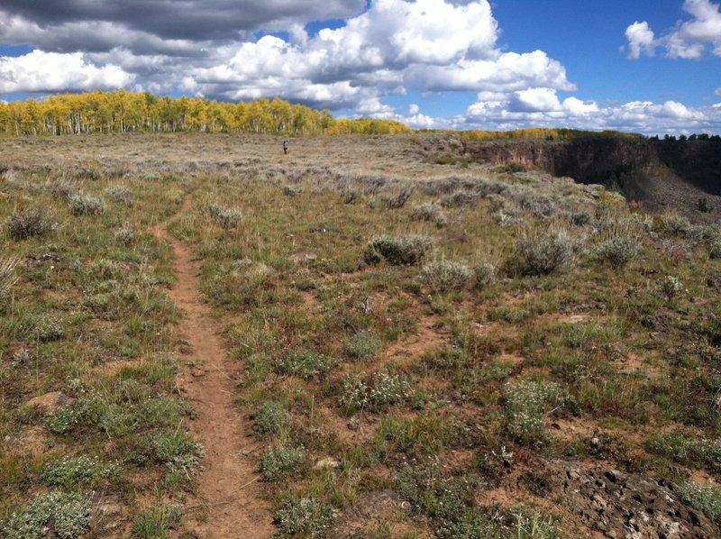 Grand Mesa offers some really nice singletrack.