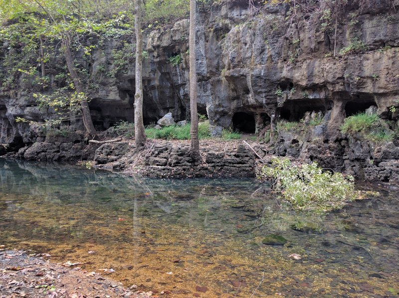 The clear waters of Whites Creek in the Irish Wilderness, Mark Twain National Forest.