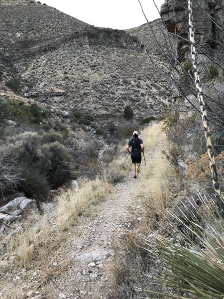 Just after the descent into Pugatory Canyon, heading toward the arroyo.