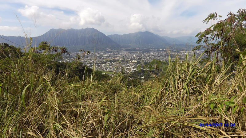 A great view of Kaneohe awaits on the trail.