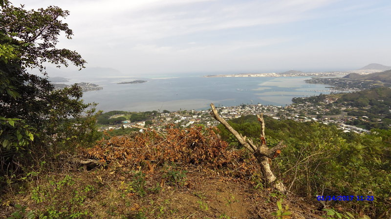 The trail offers a gorgeous view of Kaneohe Bay (you can see Chanaman's Hat too).