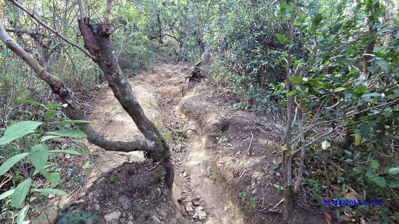 One of the climbs in Friendship Garden is severely eroded.