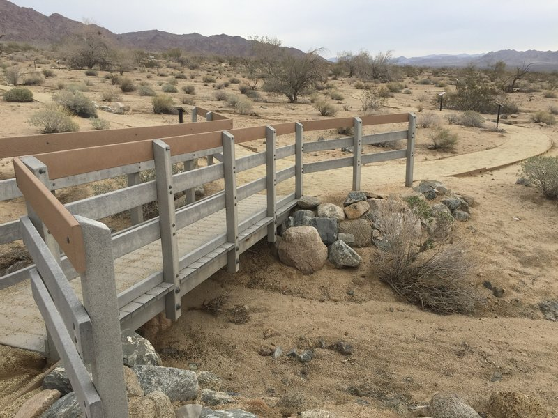 The Bajada Nature Trail begins with a sturdy footbridge over a sandy wash.