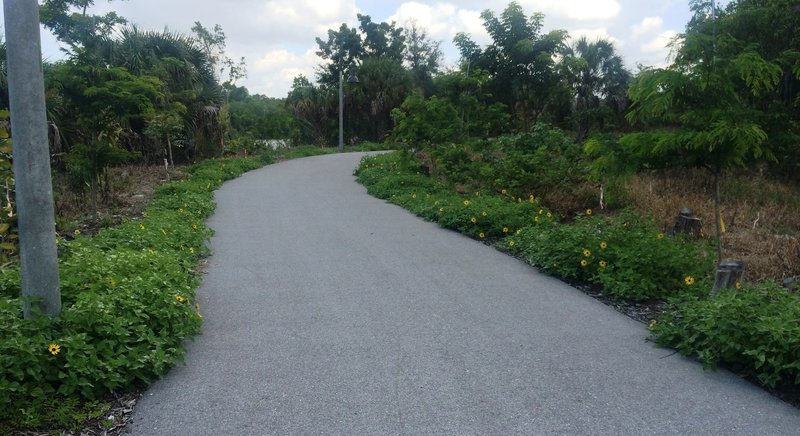 Restoration plantings along the trail provide a nice pop of color.