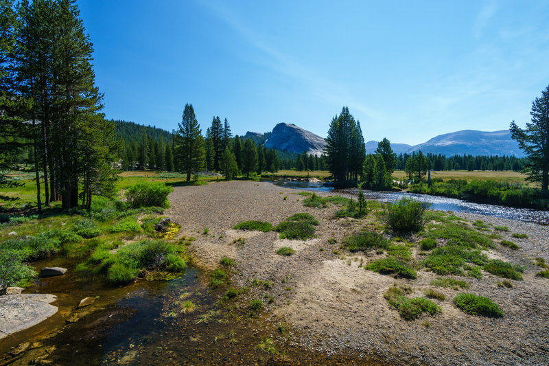 Tuolumne Meadows lies lush and verdant on the John Muir Trail in Yosemite National Park.