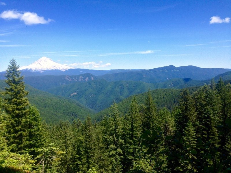 This view from the Plaza Trail looks toward Mt. Hood and Devil's Peak on Hunchback Mountain. Photo by Cameron Brown.