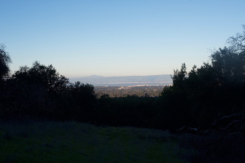 The trail begins to emerge from the woods and views of the South Bay stretch out before you.