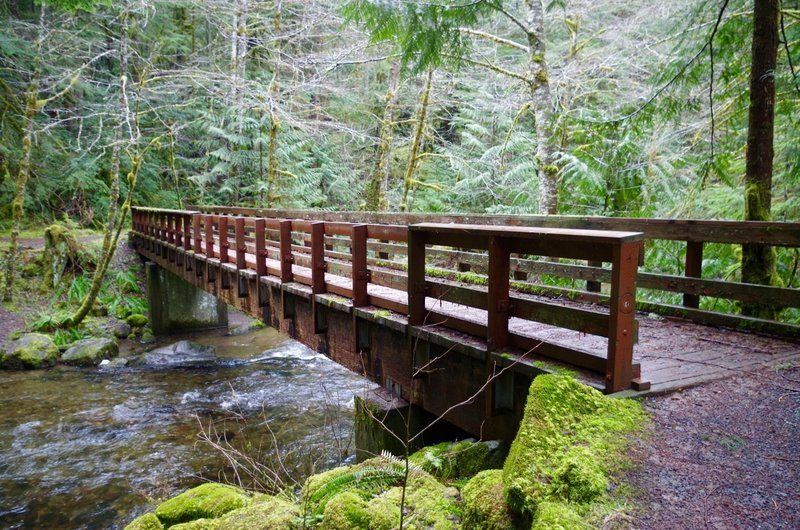 Still Creek Trail actually starts in Camp Creek Campground at this bridge over Camp Creek. The 1.6 mile trail ends at Still Creek. Photo by John Sparks.