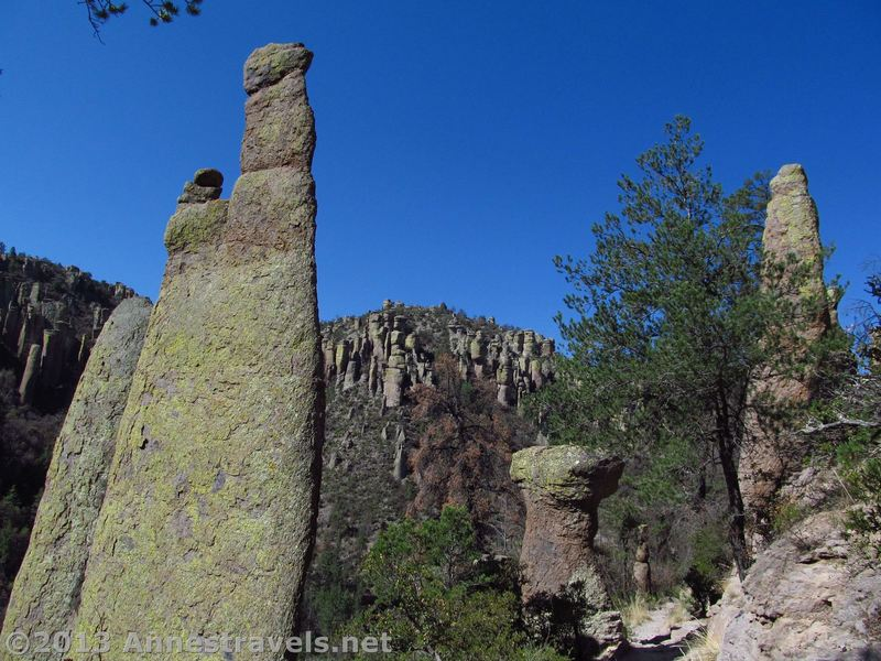 Rock spires stand as sentinels along the Ed Riggs Trail.