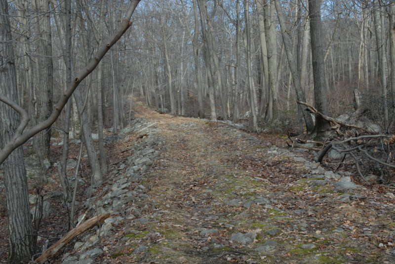 Harriman State Park offers beautiful forest roads and trails.