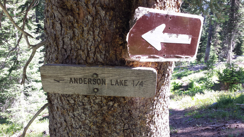 While the trail sign to Anderson Lake is obvious if you're running north, it's hidden if you're running south.