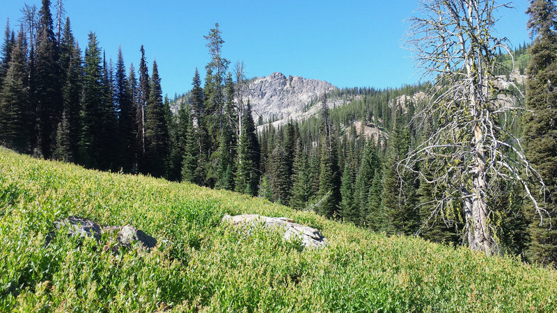 Heading up the Anderson Lake Trail, look to your right to get this gorgeous view of Boulder Mountain.